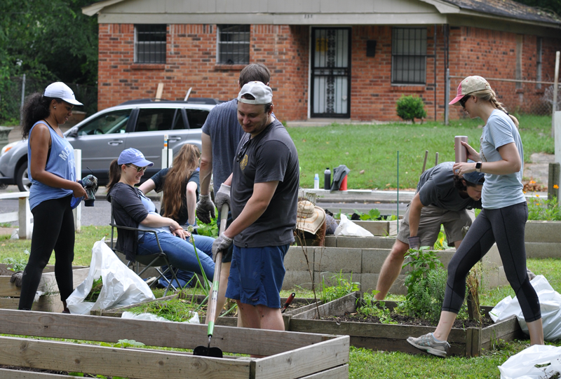 Residents working in a garden